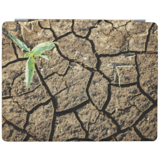 Seedling In Cracked Earth iPad Cover