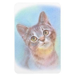 Seeing kitten kijitorasabatora which is lifted flexible magnets