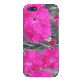Seeing Pink iPhone 5 Cover