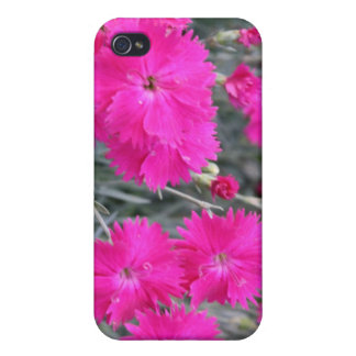 Seeing Pink iPhone 4 Cover