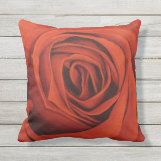 """""""Seeing Red"""" Pillow"""
