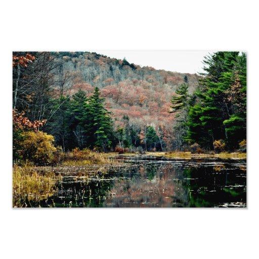 Seek & Find Photography Print Photograph