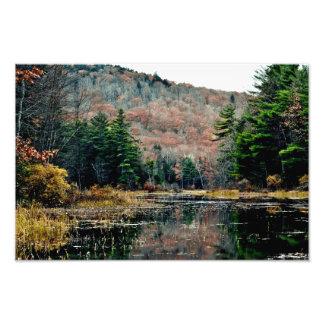 Seek & Find Photography Print Photo Print