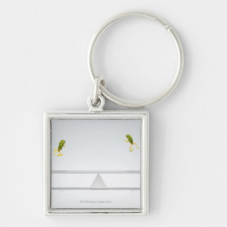 Seesaw Key Ring