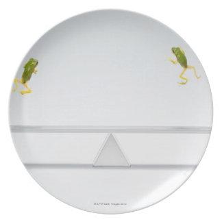 Seesaw Plate