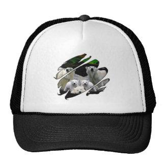 Seetru-polarbears Trucker Hats