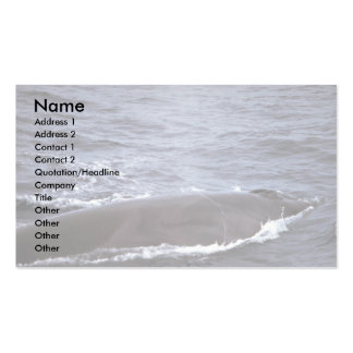 Sei whale business card templates