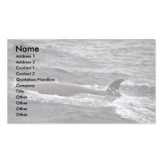 Sei whale business card template