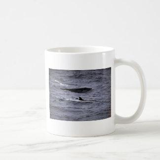 Sei whale coffee mugs
