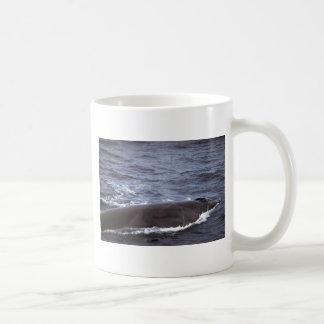 Sei whale coffee mug