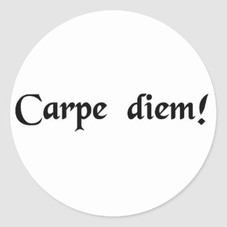 Seize the day. classic round sticker