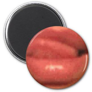 sekusui lip 6 cm round magnet