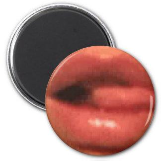 sekusui lip refrigerator magnet