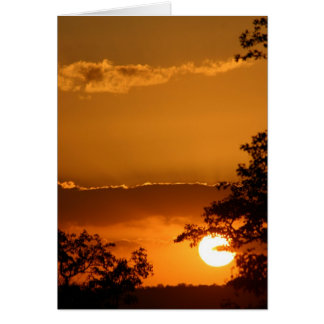 Selati Sunset Greeting Card