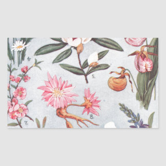 Selected State Flowers Vintage Art Illustration Rectangle Stickers