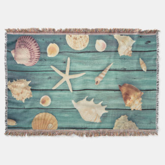 Selection Of Seashells
