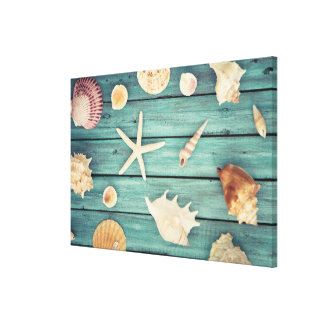 Selection Of Seashells Canvas Print