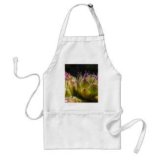Sempervivum Plant Apron