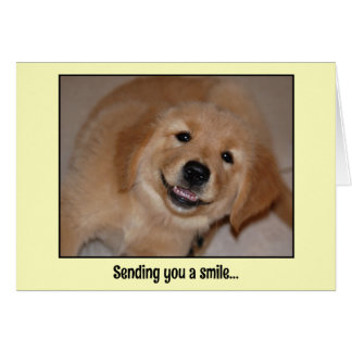 Sending you a smile...smiling golden pup greeting card