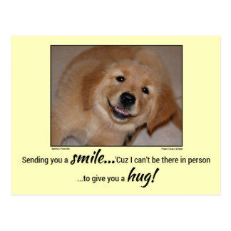 Sending You a Smile...Smiling Golden Puppy Postcard