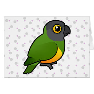 Senegal Parrot Card