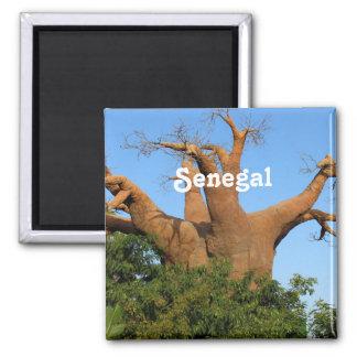 Senegal Square Magnet
