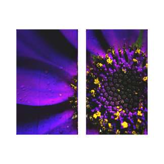 Senetti Purple Flora. Canvas Print
