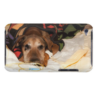 senior dog in the intensive care unit with a iPod touch Case-Mate case