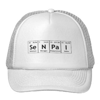 SeNPaI Periodic Table Element Word Chemistry Atoms Cap