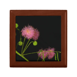 Sensitive Brier Small Square Gift Box