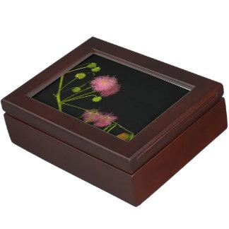 Sensitive Brier Keepsake Box
