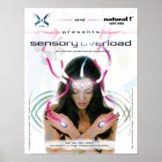Sensory Overload Poster