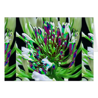 Sensual Romantic Flowers Valentine's day Gifts FUN Greeting Card