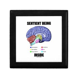 Sentient Being Inside (Anatomical Brain) Trinket Box
