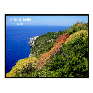 Sentiero dei fortini path - Capri, Naples, Italy Postcard