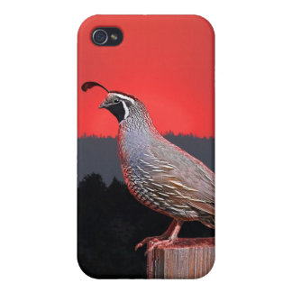 SENTINEL AT SUNSET iPhone 4/4S CASE