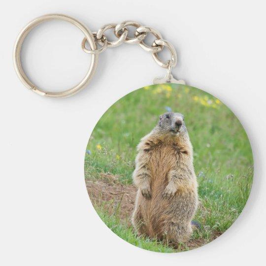 Sentinel marmot basic round button key ring