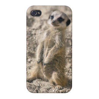 Sentry-in-Training iPhone 4 Savvy Case