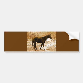 Sephia Pop Art Horse Bumper Sticker