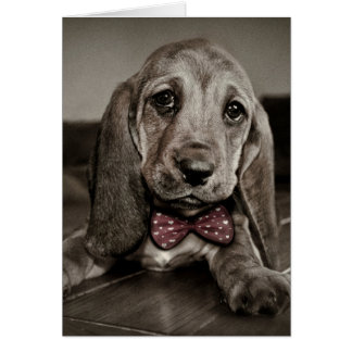 Sepia Basset Hound Puppy Happy Valentine's Day Card