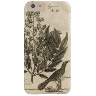 Sepia Botanical Tableau Barely There iPhone 6 Plus Case