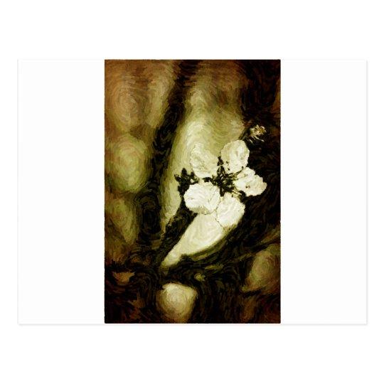 Sepia cherry blossom postcard