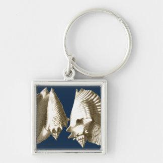 Sepia Conch Seashells Key Ring