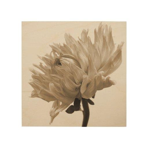 sepia dahlia wood prints