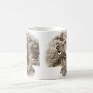Sepia golden retriever with rose mug