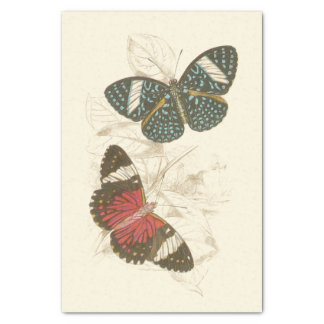 Sepia Leaves with Colorful Butterflies Tissue Paper