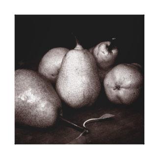 Sepia Pears Canvas Print
