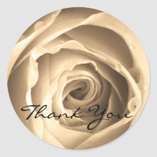 Sepia Rose, Thank You Round Sticker