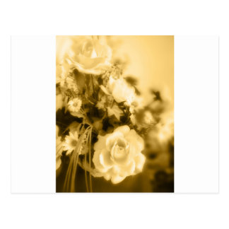 Sepia Roses Photography Postcards