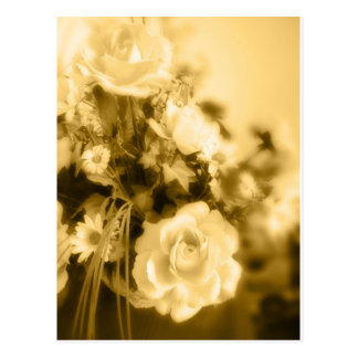 Sepia Roses Photography Postcard